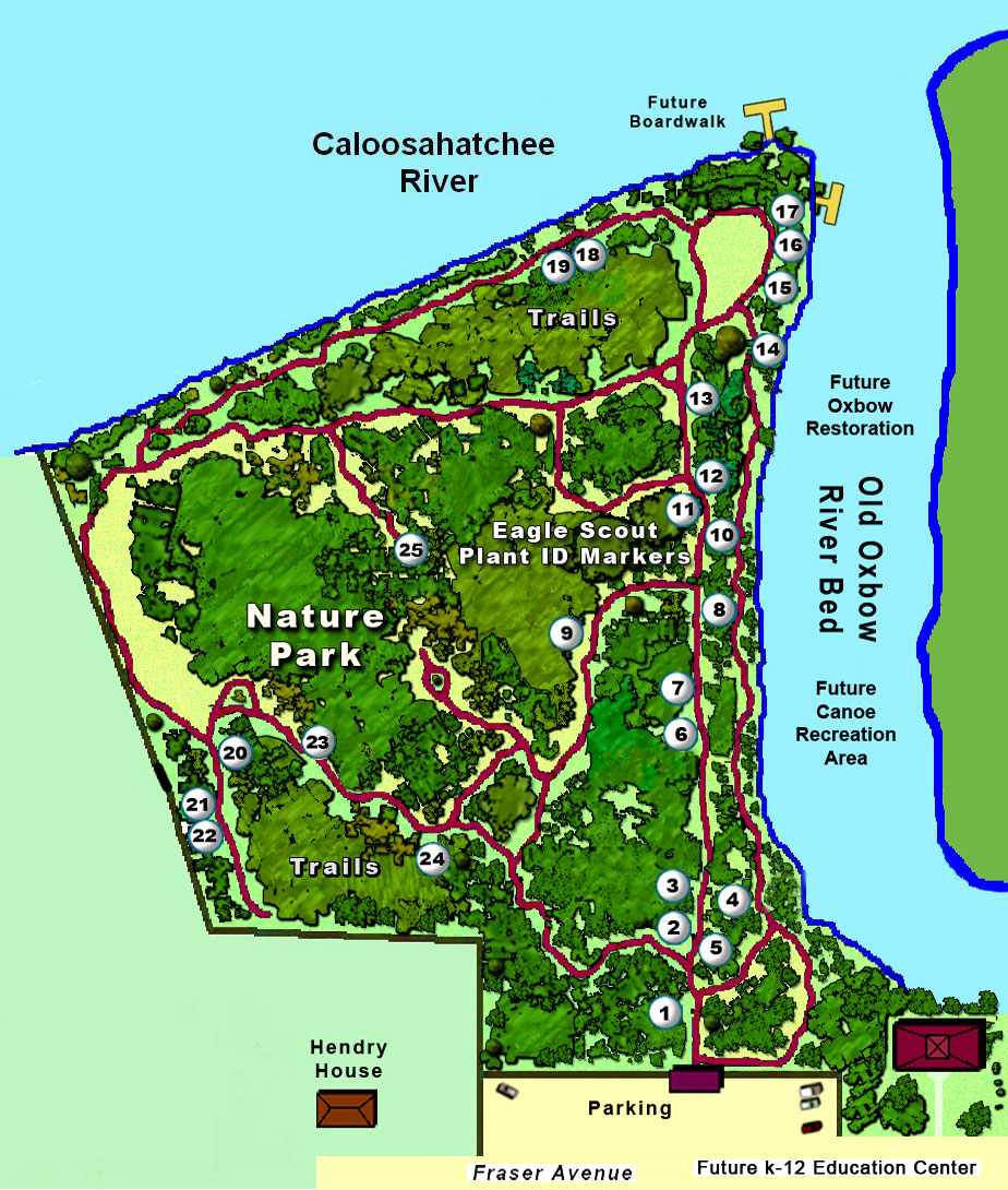 Detailed Map Of Ocala National Forest Creativehobby Store